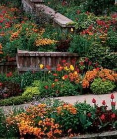 Fiery poppies spark a garden that's ablaze with red and orange tones. (Tulips, Nemesia strumosa, and chrysanthemum foliage provide the rest of the color.)