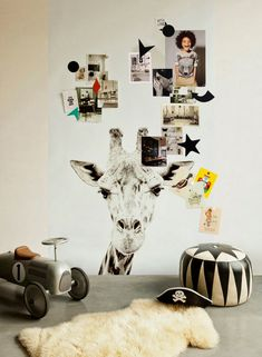 Chalkboard Magnetic Wall Sticker With Animal Theme