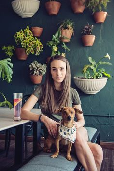 Dog Friendly Johannesburg - A Streetbar Named Desire, Parkwood Dog Cleaning, Group Of Dogs, Mini Dogs, Dog Mom Gifts, Funny Dog Pictures, Girl And Dog, Diy Stuffed Animals, Dog Portraits, Dog Accessories