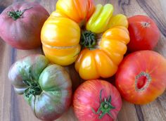 Heirloom tomatoes aare so beautiful and have so much more flavor than mass marketed tomatos