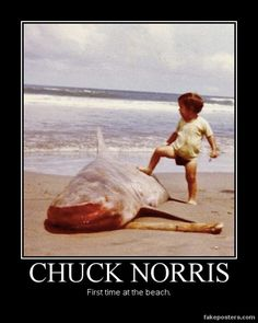 Chuck Norris - Demotivational Poster