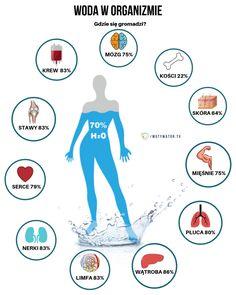 Ile wody tak naprawdę należy wypijać w ciągu dnia? - Motywator Dietetyczny Importance Of Water, Health Facts, Food And Drink, Health Fitness, Healthy Eating, Medical, Instagram, Sport, Anatomy