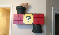 """RedditorCollinferalcombined his love for carpentry, felines and Italian plumbers and made this Mario """"Warp Pipe"""" cat climber for a friend's severely bored kitty."""