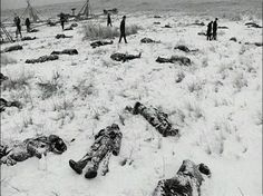 Wounded Knee Massacre occurred on December near Wounded Knee Creek, South Dakota where nearly 300 Native Americans were killed. This is the American history that isn't taught in schools. Native American History, American Indians, Wounded Knee Massacre, Into The West, Le Far West, Native Indian, Indian Tribes, World History, History Books