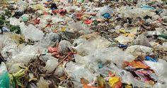 Le Sénégal vote une loi contre les sacs plastiques! http://www.humanosphere.info/2016/01/le-senegal-vote-une-loi-contre-les-sacs-plastiques/ via @humanosphere
