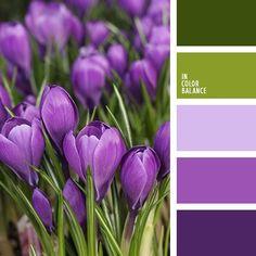 Color Palette violet color how to mix - Violet Things Color Palette Purple Color Palettes, Colour Pallette, Color Palate, Colour Schemes, Design Seeds, Good Color Combinations, Color Combos, Green And Purple, Green Colors