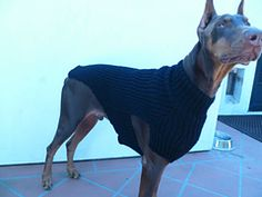 Free pattern-Ravelry: Big dog's sweater pattern by Chialee Yeh