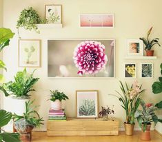TV Wall to Beautiful Picture Wall in 5 Easy Steps - A Piece Of Rainbow