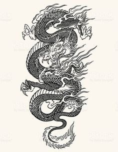Highly Detailed Asian Dragon Tattoo Line Work Asian Dragon Free Vector Art Tattoo Free Design Dragon Tattoo Sketch, Dragon Tattoo For Women, Japanese Dragon Tattoos, Dragon Tattoo Designs, Tattoo Sketches, Dragon Tattoo Stencil, Dragon Tattoo For Thigh, Dragon Line Drawing, Dragon Tattoo With Flowers