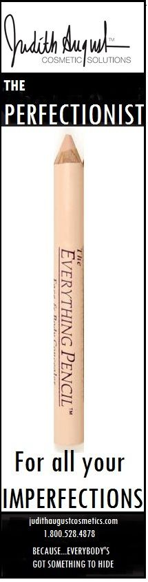 THE PERFECTIONIST ---THE EVERYTHING PENCIL