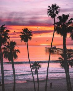 San Clemente, California by Eric Rubens San Clemente California, California Surf, Southern California, Ocean Pictures, Pretty Pictures, Calming Pictures, Nature Pictures, Beautiful Sunset, Beautiful Beaches