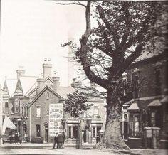 The Oak Inn, Selly Oak  1908