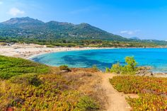 Beachgoers must traverse a slender path lined with spiky bushes to reach Saleccia beach, a quiet white-sand beach in Corsica, France.