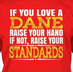 Raise Your Standards, Danish Christmas, Odense, Copenhagen Denmark, Be Yourself Quotes, Make Me Smile, Language, Love You, Humor