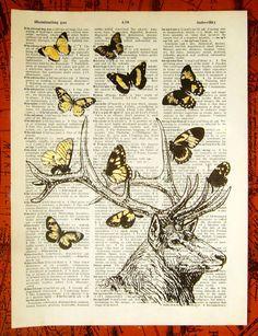 Butterfly buck