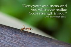 """Quotemealfor """"Deny your weakness and you will never realize God's strength in you. Reading Words, Scripture Reading, Daily Scripture, Gods Strength, Never, Thoughts, Instagram, Ideas"""