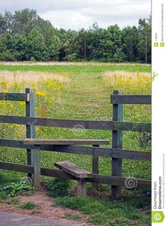 Stile = easy way over a fence!