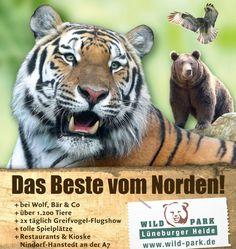 Ausflugsziele mit Haustier Hund... Herzlich willkommen im Wildpark Lüneburger Heide Entdecken Sie eine der schönsten Tierlandschaften im artenreichsten Wildpark Deutschlands. Am Rande des Naturschutzgebietes der Lüneburger Heide gibt es ganz besondere und seltene Tiere wie Sibirische Tiger, Vielfraße, Präriehunde, Schneeleoparde…