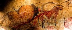 The main panel in Marsoulas cave is a rich polychromy of various animals intercrossed by carvings of many others.Bison, horses, antelope, deer... a view into the magical and spiritual world of our ancestors. Simply breathtaking.   13,000 years old.