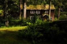 House in the Norwegian forest