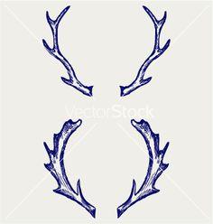 Deer horns vector 1152087 - by kreatiw on VectorStock®