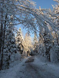 Mapleton Park, Moncton, New Brunswick, Canada