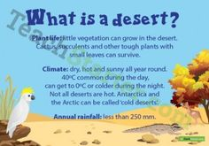 What is a Desert? Poster