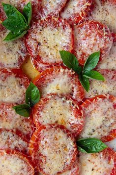 Baked Tomatoes with Cheese | Quick Broiled or Baked Tomato Slices Dinner Side Dishes, Side Dishes Easy, Side Dish Recipes, Baked Parmesan Tomatoes, Oven Roasted Tomatoes, Baked Tomato Slices, Southern Tomato Pie, Tomato Pasta Salad