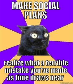 Lol how sad is it that I am totally the social anxiety cat? (at least around people I don't know) :-) Little Bit, Up Book, Lol, Story Of My Life, Just For Laughs, Laugh Out Loud, The Funny, Just In Case, I Laughed
