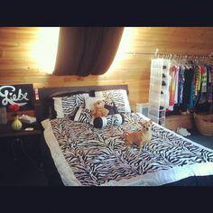 My Zebra Bedroom. Liebe Painting & Dog Moyer <3