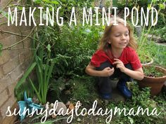 How to make a mini pond http://sunnydaytodaymama.blogspot.co.uk/2011/08/making-mini-pond-in-our-garden.html
