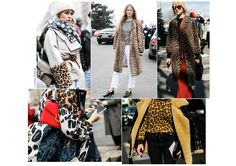 Seen on only the most stylish girls at Fashion Week, see how the classic leopard print look has been reinvented this season.