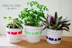 free crochet pattern potted plant covers