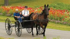 The source of information about what to see and do in the 8 county region of Ohio's Amish Country. In print or on the web. Send us an email request and we'll mail out a copy of our magazine along with other information on the area.  #Amish #Ohio #Tourism