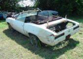 '69 Camaro Convertible Pace Car Car Chevrolet, Chevy, Impala Car, Convertible, Camaro For Sale, Scrap Car, Car Barn, Camaro Rs, Rusty Cars