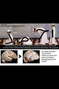 Sufi Quotes, Allah Quotes, Muslim Quotes, Quran Quotes, Islamic Prayer, Islamic Teachings, Islamic Dua, Islam Hadith, Islam Quran