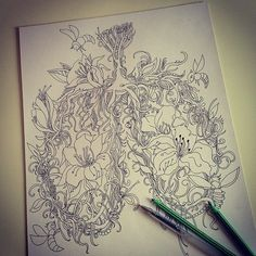 lung drawing - Google Search