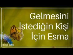 Esma for the person she wants to come Karma, Allah, Wedding Photos, Prayers, Religion, Youtube, Faith, Aspirin, Women's Jewelry