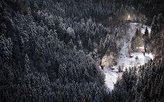 Deze zero-impact design woningen smelten weg in het bos