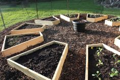 raised bed garden - I like the layout