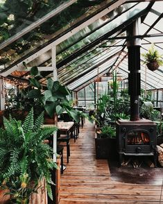 If GreenHouse Co was ever to start a coffee shop this is exactly what it would look like 🙌 Amazing! Indoor Garden, Indoor Plants, Outdoor Gardens, Dream Garden, Home And Garden, Outdoor Spaces, Outdoor Living, Backyard Greenhouse, Greenhouse Plans