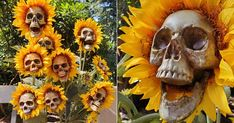 These DIY Sunflower Skeletons Scream Halloween, and I Want a Whole Garden Full of Them Scream Halloween, Halloween Games, Up Halloween, Halloween Skeletons, Halloween Projects, Vintage Halloween, Creepy Halloween Decorations, Spooky Decor, Flower Skull