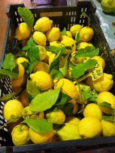 lemons-as beautiful as a flower arrangement