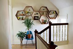 Honeycomb shelves. I want to make these. A bit more modern though, maybe painted in a bright colour.