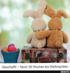 WoW - only 39 Weeks is X-mas Time 🎅🎄🎁💫☃️❄️🕯🔔 xmass xmas santaclaus christmas candlelight merrychristmas basel baselswitzerland Funny Easter Wishes, Easter Bunny Pictures, Three Little Birds, Easter Quotes, Facebook Humor, Halloween Pictures, Over The Rainbow, Easter Crafts, Cool Pictures