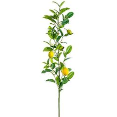 51' Artificial Lemon Spray -Green/Yellow (pack of 8) *** Check out the image by visiting the link.