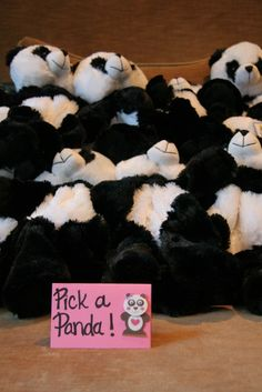 Build a Panda, I love it!!