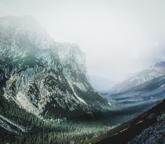 Mist in the Mountains Tatra Mountains Poland [OC] [974851] SPURSY123
