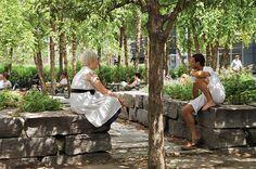 Martha Schwartz Parceiros - Projectos - Parques - Yorkville
