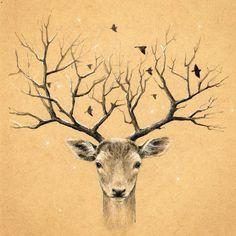"""Вот я и вернулась в #денькрокодила с @elinaellis, """"Рога"""" 13.03.2016 #рисование #рисуноккарандашом #рисую #акварельныекарандаши #цветныекарандаши #иллюстрация #олень #рога #deer #horns #draw #drawing #art #pencildrawing #colorpencil #sketch #illustration #sketch_daily #instartpics #art_we_inspire #arts_help #animal"""
